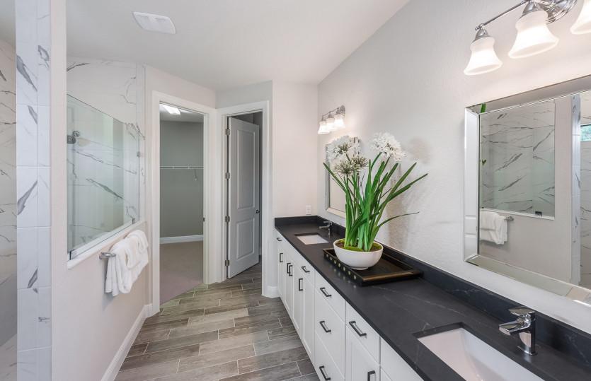 Fifth Avenue: Model Representation: Owner's Bathroom