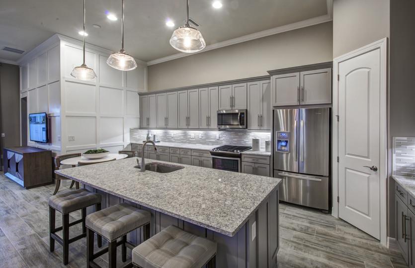 Orleans: Conceptual: Kitchen