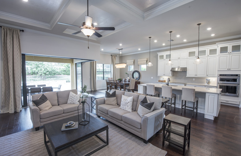 Pinnacle: Open Living Area