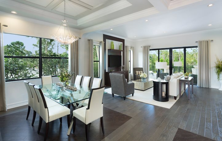Alexandria Living and Dining Room